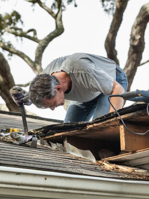 Roof Inspections Home